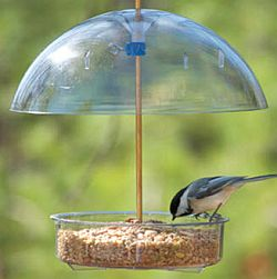 Dome feeder