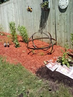 newspaper and mulch
