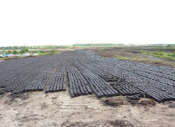 peat moss mined in Ireland