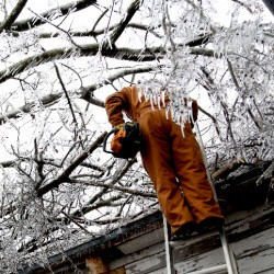 Ice on tree with man