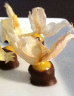 ground cherry dipped in chocolate