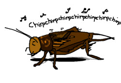 Cricket chirping cartoon