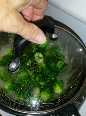 brussel sprouts steaming