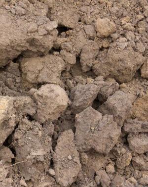 dirt clods