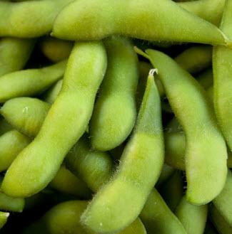 edamame aka soybeans