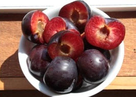 Plum 'Black Ice' fruit