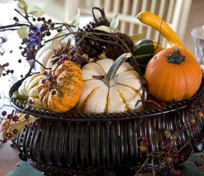 pinecones-gourds-berries