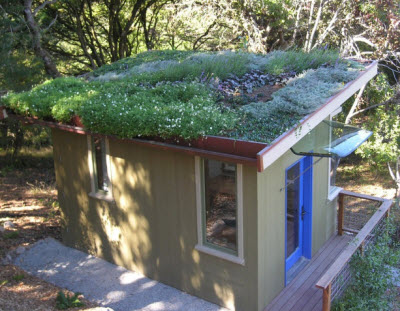 green-roof-us