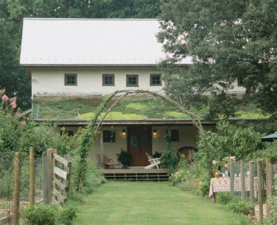 green-roof-straw