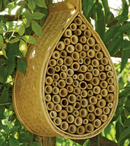 creating a bee home garden bite rh gardenbite com bee homes south molton bee home accessories uk